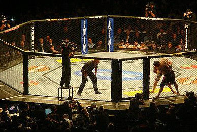 Fights bei UFC 135