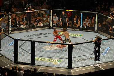 UFC Fight Night in Seoul live bei maxdome